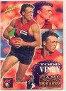 【送料無料】スポーツ メモリアル カード シリーズ#トッド1995 select afl series 2319 todd vineymel...