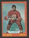數位內容 - 【送料無料】スポーツ メモリアル カード クインアトランタ197374トップスホッケーカード61 nmm