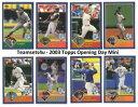 【送料無料】スポーツ メモリアル カード 2003トップスミニセット**チーム**
