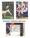 【送料無料】スポーツ メモリアル カード 2002セット**チーム**