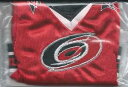 【送料無料】スポーツ メモリアル カード 200607 アッパーデッキホッケーミニジャージーeric staalカロライナハリケーン