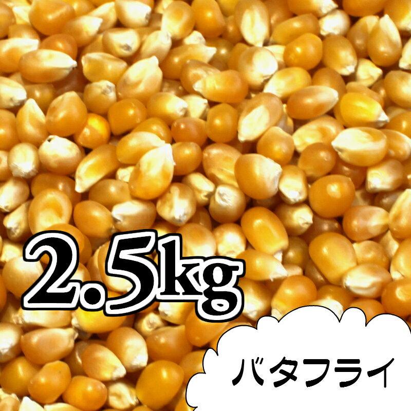 ポップコーン豆2.5kg【バタフライ種】