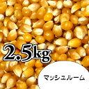 ポップコーン豆2.5kg【マッシュルーム種】