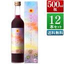 サングリア ワイン 12本セット 屋久島パッション&赤ワイン 9度 500ml [ 本坊酒造 赤ワイン / 送料無料 ]
