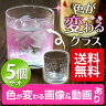 冷やすと色の変わる ありがとうグラス 5個セット [包装不可/本坊酒造 ロックグラス/焼酎 グラス/送料無料]