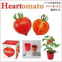 【お買い得】ハートのプチトマトの実のなる☆ハートマ