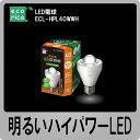エコリカ(ecorica)LED電球(40W形電球色相当)ECL-HPL40WWH