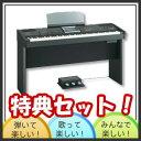 【配送・据付設置無料サービス】ローランド 電子ピアノRK-300-BKS【特典セット】【送料無料】