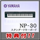 【送料無料】【特典付き】YAMAHA(ヤマハ)キーボード(ポータブルグランド)NP-30【本体カラー:ブラック】【ヘッドホン&オリジナルお手入れセット付】【高さ10cmのコンパクトボディに76鍵&スピーカー搭載♪】