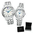 (専用ペア箱入り・クロスセット)(国内正規品)(シチズン)CITIZEN 腕時計 AW1000-51A・FE1000-51A (エクシード)EXCEED ペアモデル(チタンバンド ソーラー アナログ ペアウォッチ)