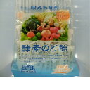 【大高酵素】奥能登天海塩を使った 酵素のど飴(しお味) 80g×3個