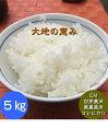 【送料無料】無農薬 白米 玄米 5分づき精米「大地の恵み」5kg EM農法 無農薬栽培米 安心安