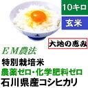 【送料無料】無農薬 食用玄米「大地の恵み」10kg EM農法...