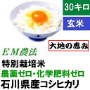 【送料無料】無農薬 食用玄米「大地の恵み」30kg EM農法...
