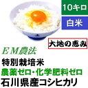 【送料無料】無農薬 白米「大地の恵み」10kg EM農法 無...