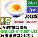 【送料無料】お試し版・「水の精」コシヒカリ白米 2kg・29...