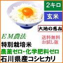 【送料無料】無農薬 玄米「大地の恵み」 2kg・お試し版・E...
