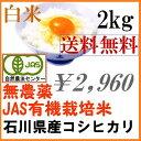【送料無料】無農薬 有機米 白米 2kg「土の詩」29年産 ...