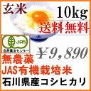【送料無料】無農薬 有機米 有機玄米 10kg「土の詩」安心...