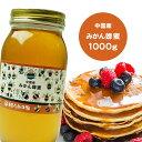 純粋ミカンはちみつ 1000g 中国産 蜂蜜 HONEY ハチミツ ハニー 送料無料 1kg はちみつ 非加熱  〔Honey House〕