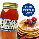 純粋ヒマワリはちみつ 1000g フランス産 蜂蜜 HONEY ハチミツ ハニー はちみつ 非加熱  〔Honey House〕