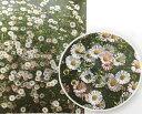 【当店農場生産】エリゲロン スパニッシュデージー(源平小菊)9センチポット苗 非常に育てやすいデージーです♪