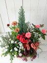【GF953-CKK】☆送料無料☆GF953コニファー&季節の花の寄せ植え(肥料付)☆お歳暮&クリスマスに♪