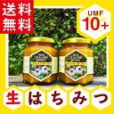 【2個セット】マヌカハニーUMF認定10+ 250g抗生物質をみつばちに与えないオーガニック養蜂。ハニーマザーのマヌカハニーはキャラメルのようなコクと香ばしさを持つ、最高品質の「生マヌカハニー」です。