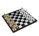 豪華なボードゲーム 金と銀のチェス 大判サイズ 約32cm×...