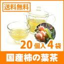 Kakinoha201411-2042