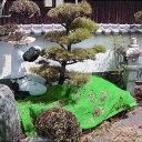 新型 植木刈込 養生シート PP 平織り 1.8m×2.7m