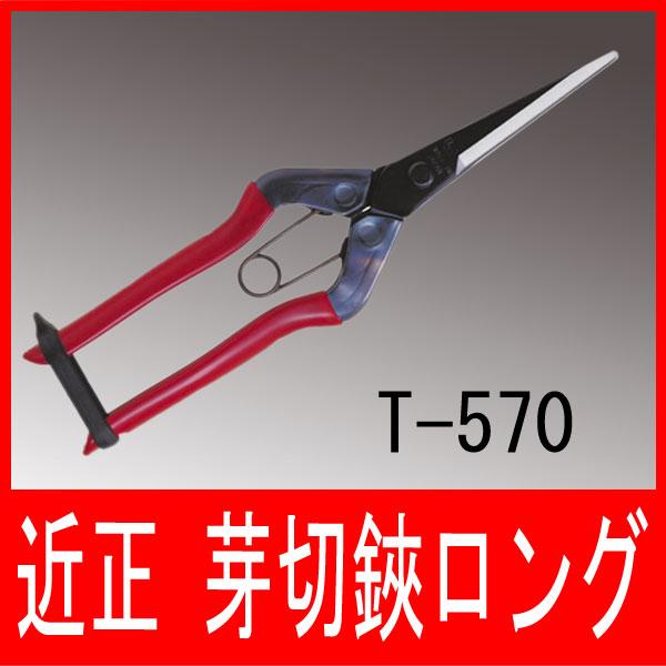 近正 芽切鋏 ロング T-570 芽切ばさみ ガーデニング