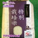 令和元年産【特別栽培米】石川県産コシヒカリ玄米2kg有機肥料100% お試し価格