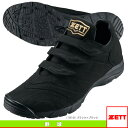 Zet-bsr8648-1919-1
