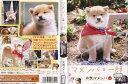 DVD>趣味・実用・教養>動物・ペット商品ページ。レビューが多い順(価格帯指定なし)第4位