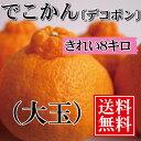 デコポン 贈答用 【送料無料】大玉8kg...