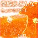 【送料無料】愛媛ホリ田ヤ【愛媛まどんな】【ちょいキズ4K】【小玉】【訳あり】 紅い宝石みかん