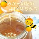 はちみつ 国産 みかん お試し用 【大人気】 愛媛県産 大三島みかんハチミツ 天然蜂蜜 100g