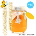 【20%OFFクーポン配布中!】(株)一梅酢 だいだい味付けポン酢