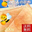 【送料無料】はちみつ みかん 国産 愛媛県産 大三島みかんハチミツ 天然蜂蜜 300g 純粋はち