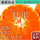 甘平 【送料無料】愛媛県大三島産 かんぺ...