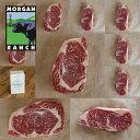 楽天HORIZON FARMSモーガン牧場ビーフ アメリカ産 牛肉 熟成 高品質 プレミアム お得な ステーキ ギフトセット アメリカンビーフ ホルモン剤や抗生物質不使用 3.1kg