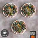 無添加 冷凍 ピザ 彩り野菜 モツァレラ イタリア産 (25