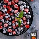 冷凍 ミックスベリー 1kg チリ産 化学物質不使用 砂糖不使用 ブルーベリー ラズベリー ブラックベリー 入り フルーツ