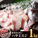 噛むほどに 和牛 の旨みがお口に広がる おつまみに 煮込みに 卸店の厳選宮崎県産 黒毛