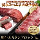 送料無料 リピート購入第1位 牛タンブロック BBQ シーズ...