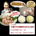 【送料無料】【初回限定】楽天売れ筋ランキング1位...