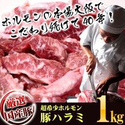 送料無料 新鮮 国産豚 サイコロステーキ 上ハラミ たっぷり500g×2パック 計 1kg 味付けなし タレセット付き バーベキュー BBQ 業務用 豚肉 はらみ ハラミ 焼肉 あす楽対応 バーベキューセット バーベキュー BBQ bbq 肉 セット ハラミ 1kg