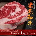 バーベキューにローストビーフにステーキに!宮崎県産 黒毛和牛サーロイン ブロック! 1kg(業務用/BBQ/国産/牛肉/シチュー)【あす楽対応】