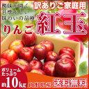 紅玉 訳あり 10キロ りんご 山形県産 ご家庭用 小玉 産地直送 林檎 リンゴ 10kg